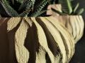 Madrepora_porta piante_dettaglio_nero