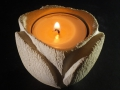 Tulipano_porta candela