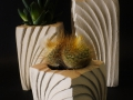 Ventaglio_porta piante_tris_nero3