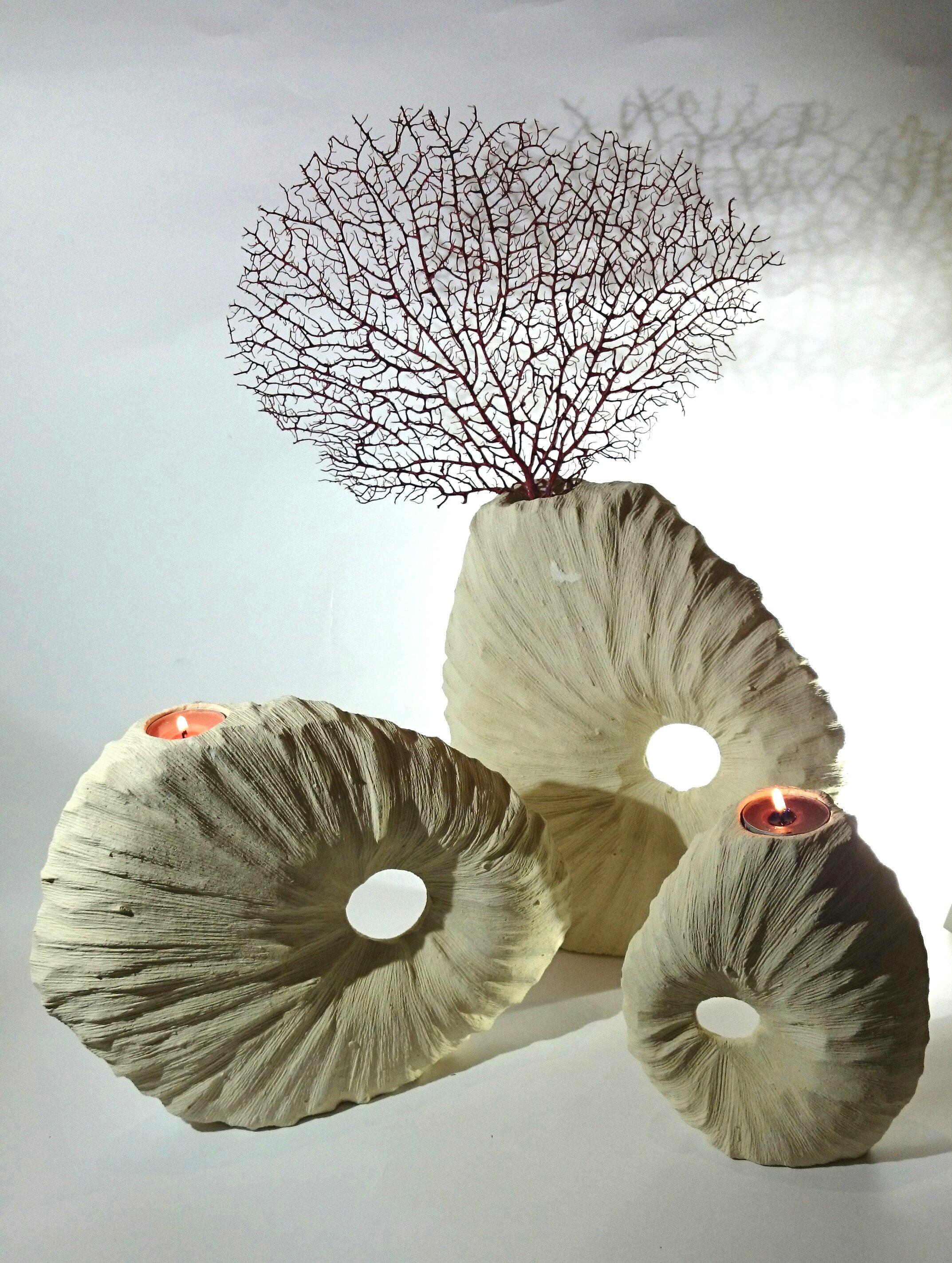 Fossile_porta fiori e porta candele_Enhanced
