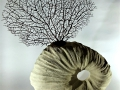 Fossile porta fiori2_Enhanced